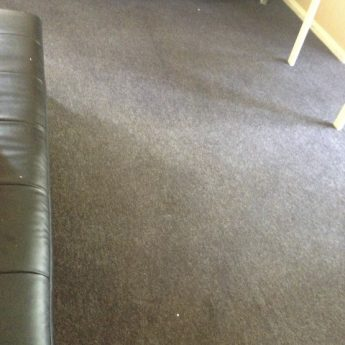 AFTER CARPET CLEANING BECKENHAM