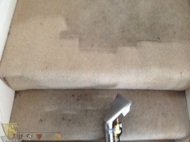 Orpington-Carpet-Cleaning-Before